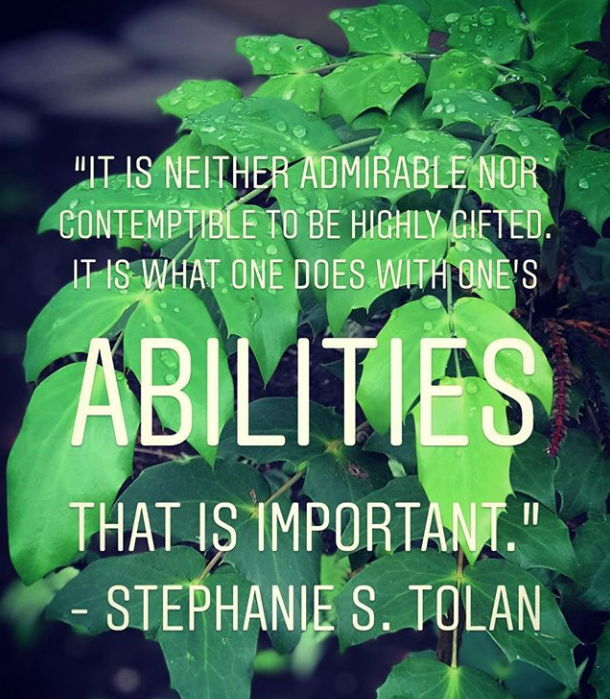 Stephanie Tolan quote via Instagram/Profoundly Gifted